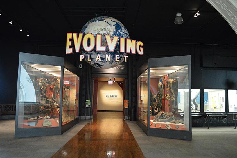 Chicago Field Museum - Evolving Planet