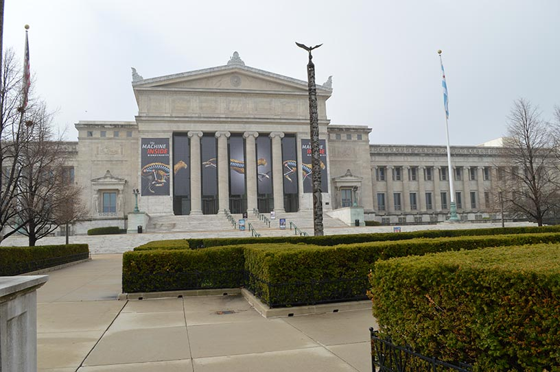 The Field Museum (via HelloChicago.fr)